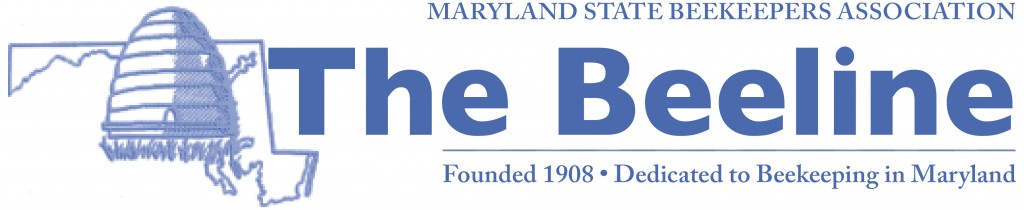 The Beeline, Newsletter of the MSBA