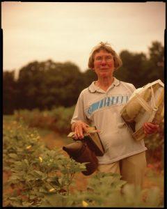 Ann Harman, beekeeper